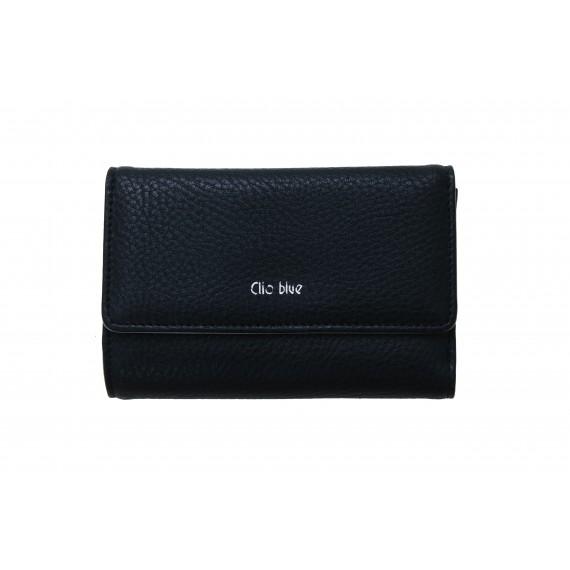 CLIO BLEU - Portefeuille